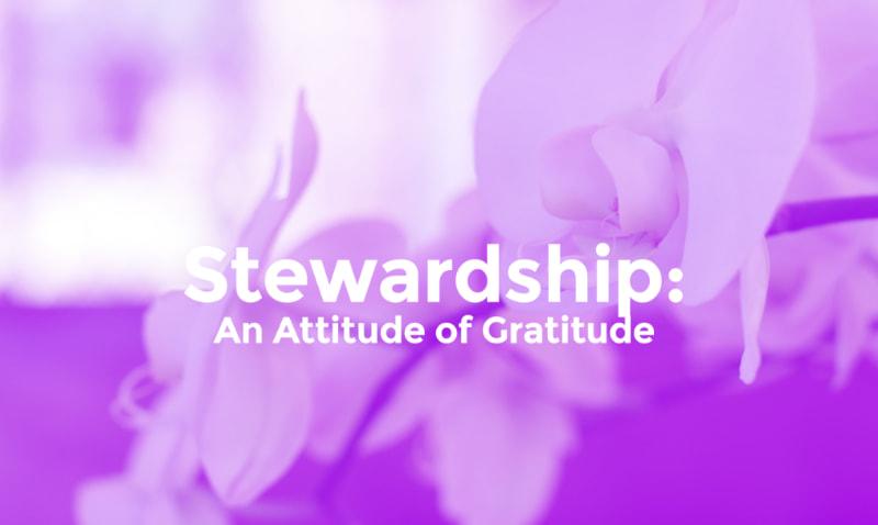 Stewardship: An Attitude of Gratitude